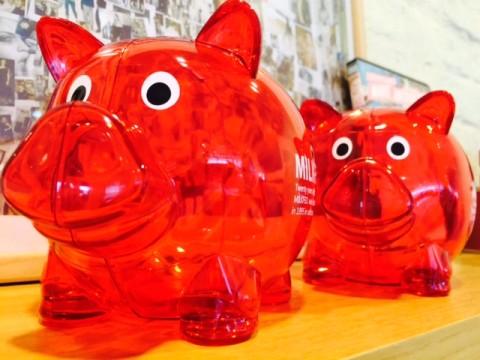 pig_up